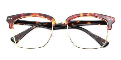 Aaron Eyeglasses Demi